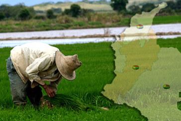 Declaración del Comité Ejecutivo Nacional Ampliado de Dignidad Agropecuaria Colombiana