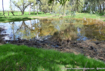 Peñalosa viola la ley al dejar sin presupuesto el Plan de Manejo Ambiental de la Reserva Van der Hammen